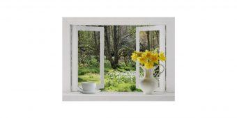 open_window_onto_woodland_scene_with_daffodils_poster-r9f61bb17328d4e59b98f0b68d46ba48f_fvvi0_8byvr_630